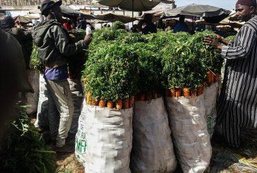 1492772429_3.-I-prodotti-venduti-allingrosso-nei-mercati-vengono-importati-dalle-zone-rurali-come-la-zona-del-Niayesnel-nord-ovest-del-Senegal