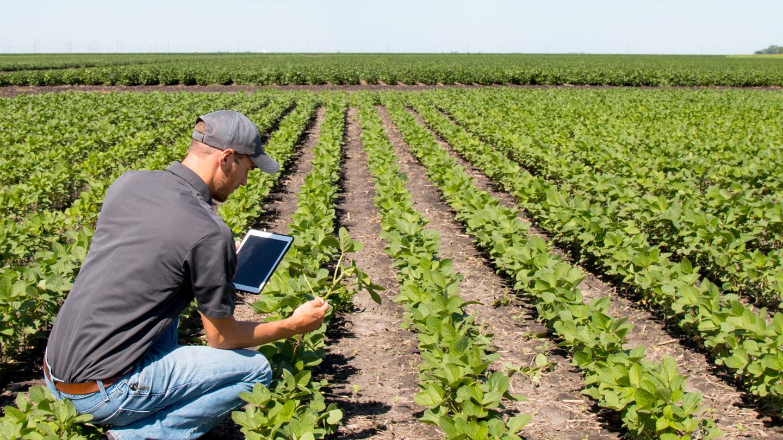 bandeau1440x810-agriculture